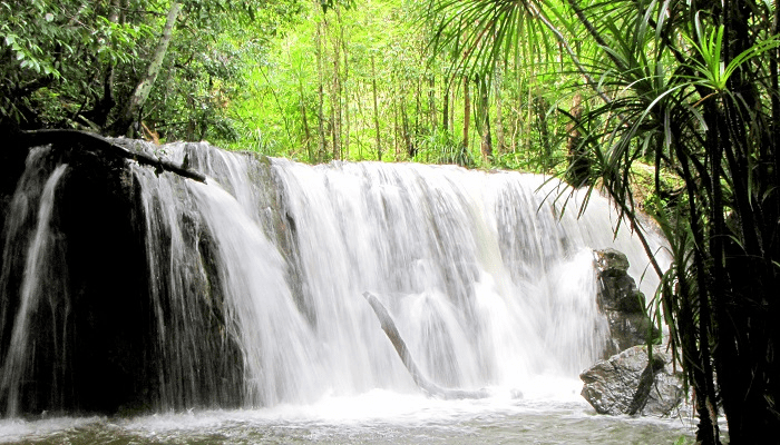 Tranh stream with charming natural landscape - a destination not to be missed in the Phu Quoc play schedule
