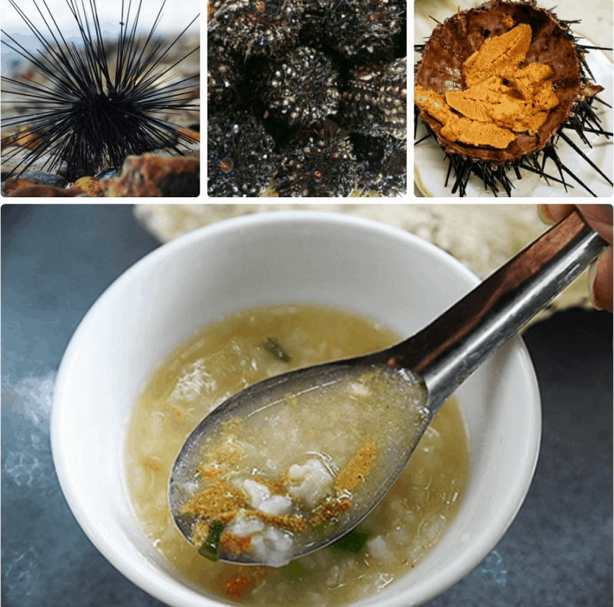 Southern Phu Quoc sea urchin porridge - a unique and strange dish (collectibles)