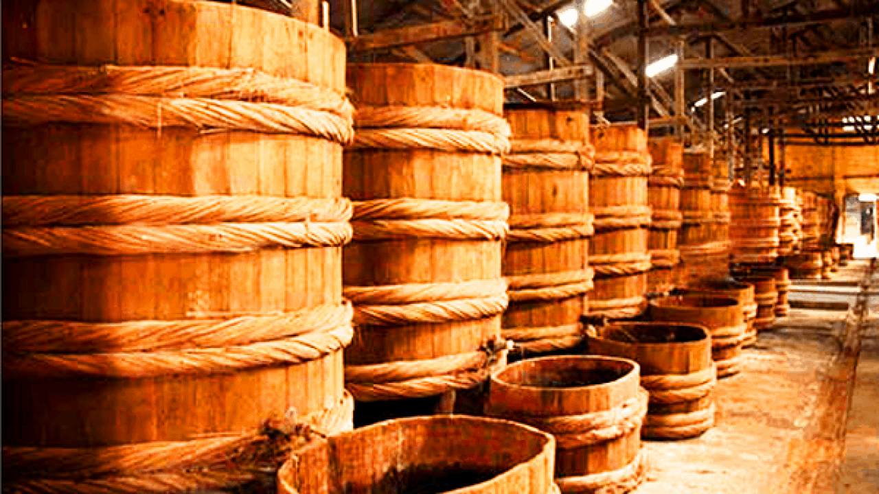 Barrel houses of fish sauce - discover everything about the specialties of Phu Quoc fish sauce (collectibles)